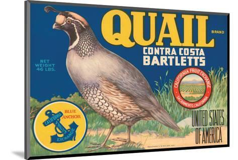 Quail Brand Contra Costa Bartletts--Mounted Art Print
