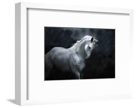 Moonlight Silver Stallion-Melanie Snowhite-Framed Art Print