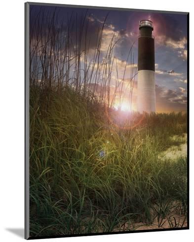Oak Island II-Steve Hunziker-Mounted Art Print