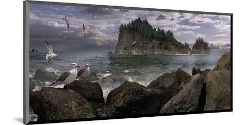 Seastack Gullage-Steve Hunziker-Mounted Art Print