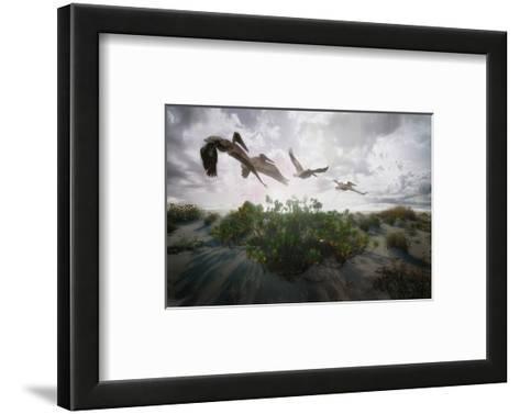 Sunset Pelicans-Steve Hunziker-Framed Art Print