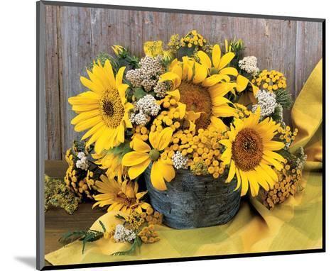 Sunflower Arrangement II--Mounted Art Print