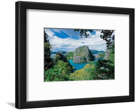 Tropical Coast--Framed Art Print