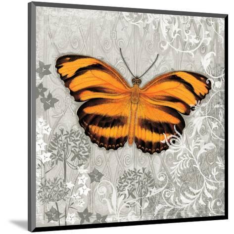 Orange Butterfly-Alan Hopfensperger-Mounted Art Print