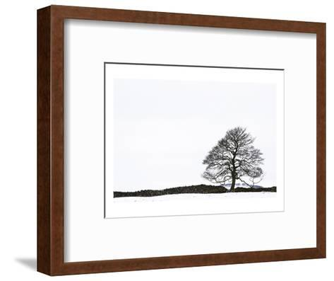 Snowy Peaks-Chris Farrow-Framed Art Print