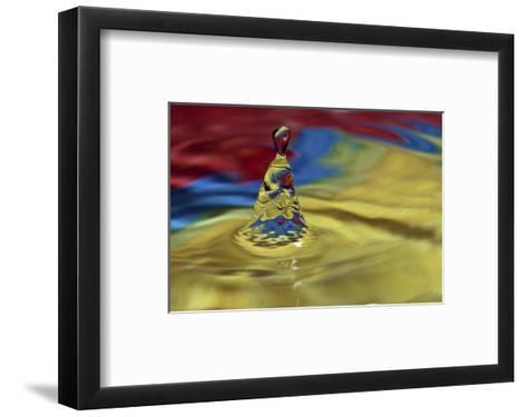Many Faces-Connie Publicover-Framed Art Print