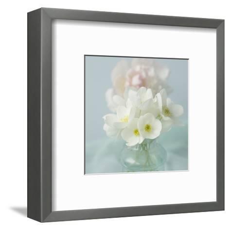 Little Bouquet of Anemones-Judy Stalus-Framed Art Print