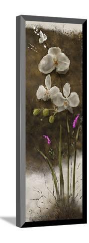 Orchid I-Rick Novak-Mounted Art Print