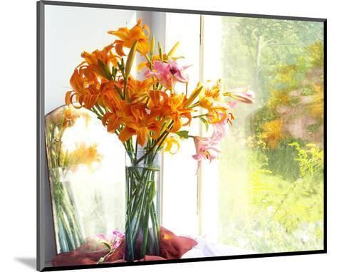 Orange Reflection-Judy Stalus-Mounted Art Print