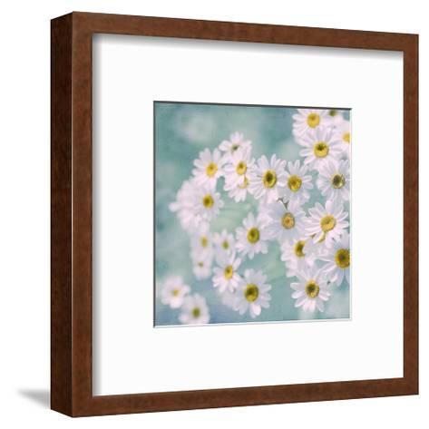 Feverfew II-Judy Stalus-Framed Art Print