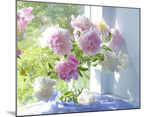 Peony Bouquet-Judy Stalus-Mounted Art Print