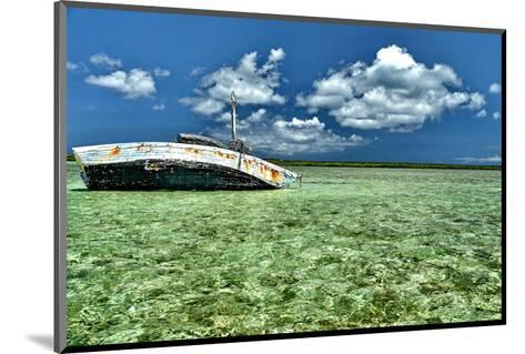 Ship Recked in Paradise-Jan Michael Ringlever-Mounted Art Print