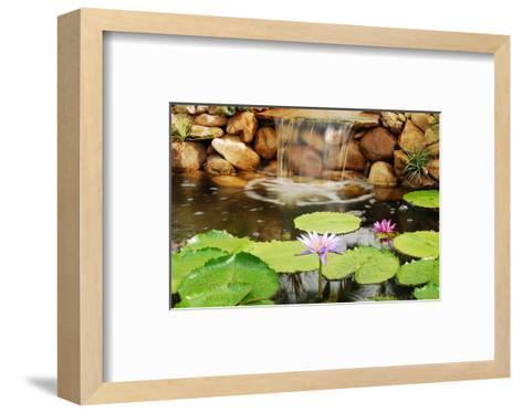 Lilly Pond-Jan Michael Ringlever-Framed Art Print