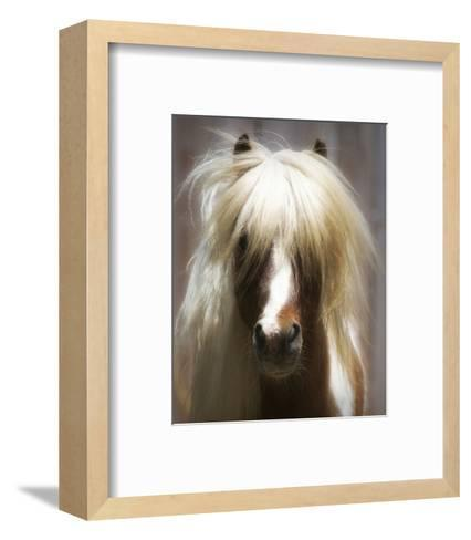 Shetland Pony-Melanie Snowhite-Framed Art Print