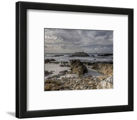 Pebble Beach Bird Rock I-Michael Polk-Framed Art Print