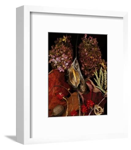 Dried Leaves hydrangea--Framed Art Print