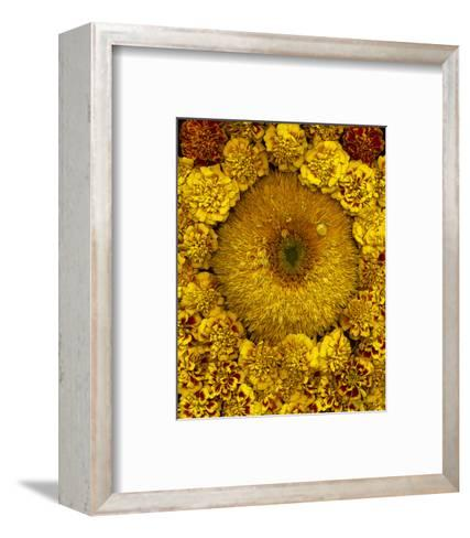 Golden Garden Sunflowers & Marigolds--Framed Art Print
