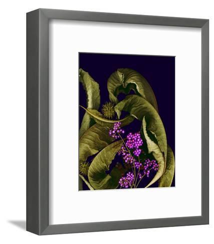 Autumn leaves purple--Framed Art Print