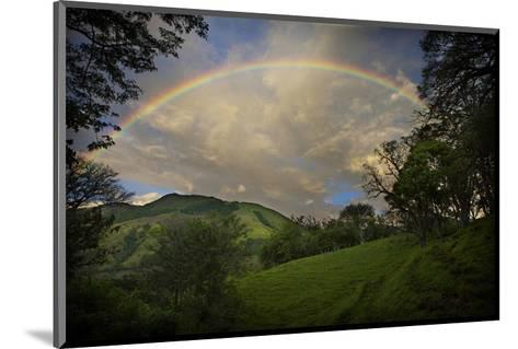 Green Field with Clouds & Rainbow-Nish Nalbandian-Mounted Art Print