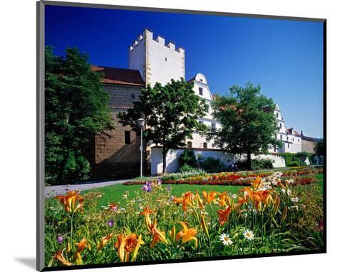 New Castle Amberg Germany--Mounted Art Print