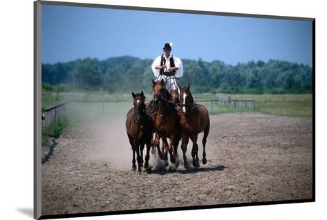 Horse show in Bugac, Bacs-Kiskun, Hungary--Mounted Art Print