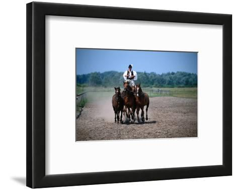 Horse show in Bugac, Bacs-Kiskun, Hungary--Framed Art Print