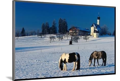 St. Marinus church at the foot of the Irschenberg, Upper Bavaria, Bavaria, Germany hph15--Mounted Art Print