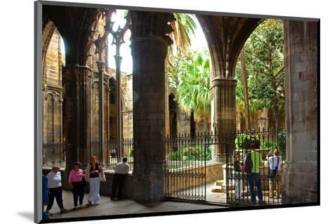 Cloister of Catedral La Seu in the Barri Gotic, Barcelona, Catalonia, Spain--Mounted Art Print