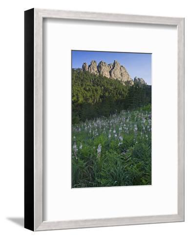 Col de Bavella, Corse-du-Sud, Corsica, France--Framed Art Print