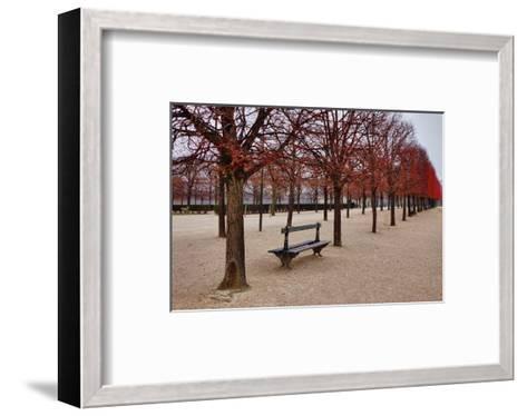 Tuileries Gardens in Winter, Paris, Ile de France, France--Framed Art Print