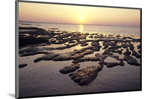 Sunset over the tideland, Sylt, Schleswig-Holstein, Germany--Mounted Art Print