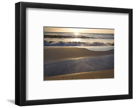 West Beach near Prerow, Fischland-Darss-Zingst, Mecklenburg-Western Pomerania, Germany--Framed Art Print