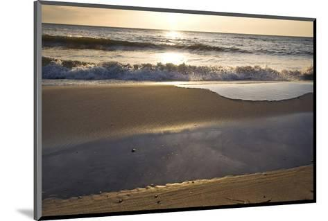 West Beach near Prerow, Fischland-Darss-Zingst, Mecklenburg-Western Pomerania, Germany--Mounted Art Print