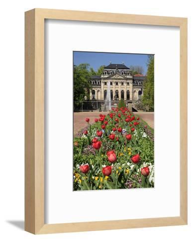 Orangery in the palace garden of Fulda, Hesse, Germany--Framed Art Print
