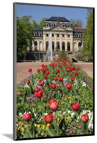 Orangery in the palace garden of Fulda, Hesse, Germany--Mounted Art Print
