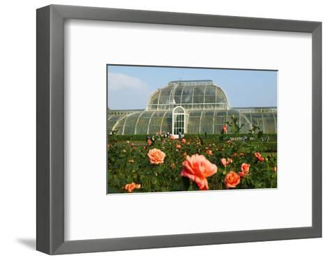 Palm house in the Royal Botanic Gardens, Kew, London, South of England, Great Britain--Framed Art Print