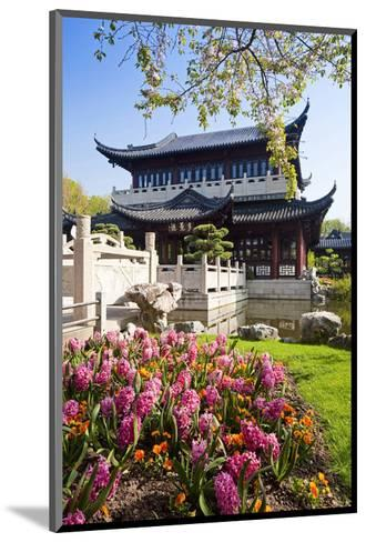 Chinese Tea House in the Chinese Garden, Luisenpark, Mannheim, Baden-Wuerttemberg,Germany--Mounted Art Print