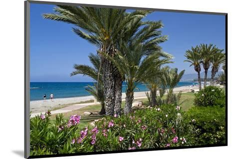 Beach with Palm Trees near the Town of Lachi on Akamas Peninsula, South of Cyprus, Cyprus--Mounted Art Print
