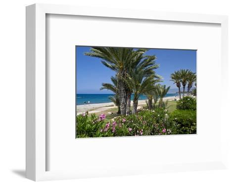 Beach with Palm Trees near the Town of Lachi on Akamas Peninsula, South of Cyprus, Cyprus--Framed Art Print