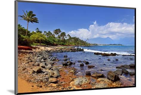 Kanaha Beach Park near Paia, Island of Maui, Hawaii, USA--Mounted Art Print