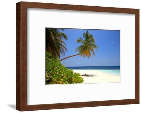 Palm-lined Beach at the Angsana Ihuru Hotel, Ihuru Island, North Male Atoll, Maldives--Framed Art Print