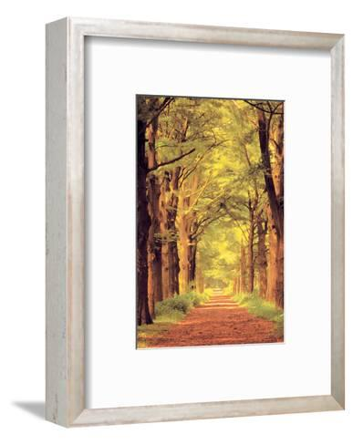 Forest Path--Framed Art Print