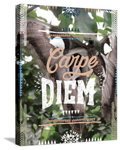 Carpe Diem-Joana Joubert-Stretched Canvas Print