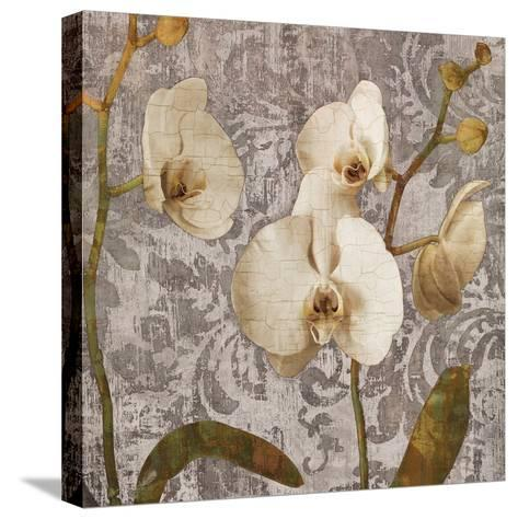 Damask Blooms II-Tania Bello-Stretched Canvas Print