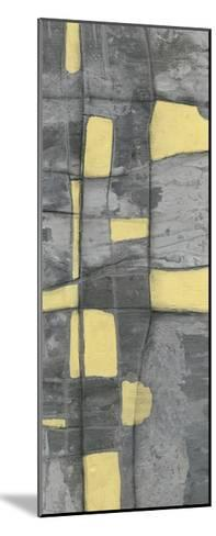Lemon on Grey I-Jennifer Goldberger-Mounted Limited Edition