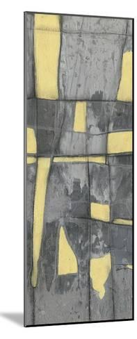 Lemon on Grey II-Jennifer Goldberger-Mounted Limited Edition
