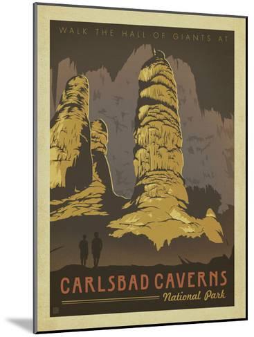 Carlsbad Caverns National Park-Anderson Design Group-Mounted Art Print