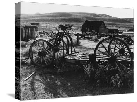 Bodi Wagon-Albert Koetsier-Stretched Canvas Print
