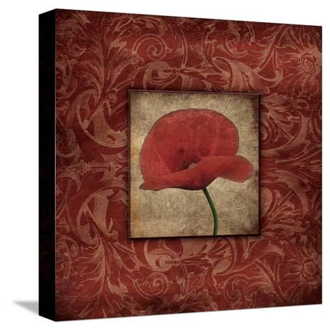 Poppie-Jace Grey-Stretched Canvas Print