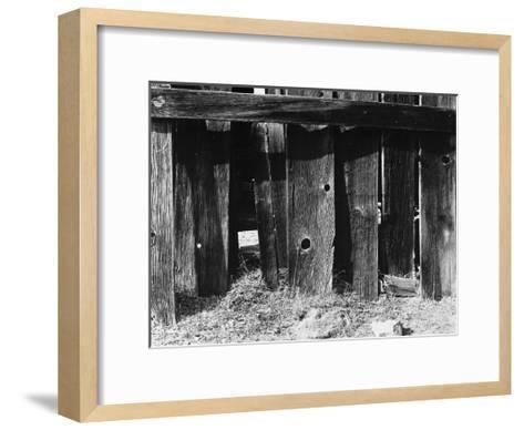 Bodi Fence-Albert Koetsier-Framed Art Print
